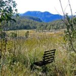 BLUE TRAIL 31: The Swamps We See From the Road (Hat Hill)
