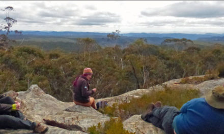 BLUE TRAIL 11:   Bird Rock Nature Reserve, Central Newnes Plateau