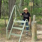 Blue Trail 15: Stile Country, Central Megalong Creek Catchment